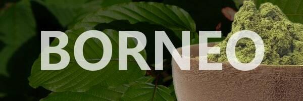 Borneo Kratom